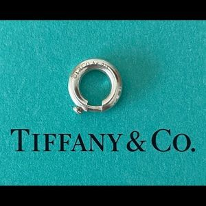NEW Tiffany and Co Sterling Silver Charm Jump Ring